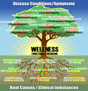 root cause of disease/symptoms