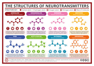 neurotransmitters imbalances