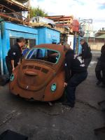 Rusty Bug Restoration Project