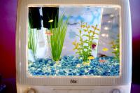 iMac fish