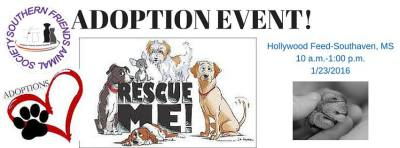 adoption events