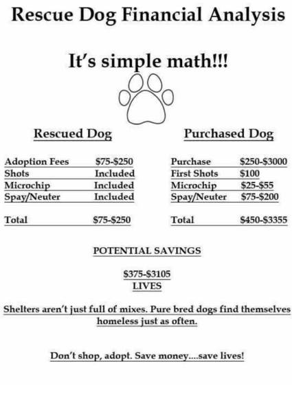 southaven ms adopt a dog