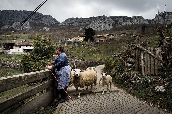 España: Cooperativas productoras de alimentos apuestan a la equidad de género