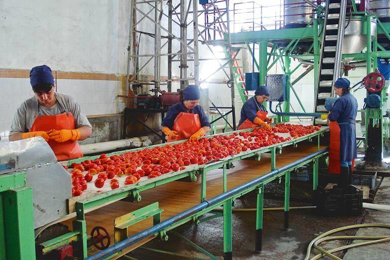 Compre Cooperativo: la nueva herramienta comercial de la Economía Solidaria