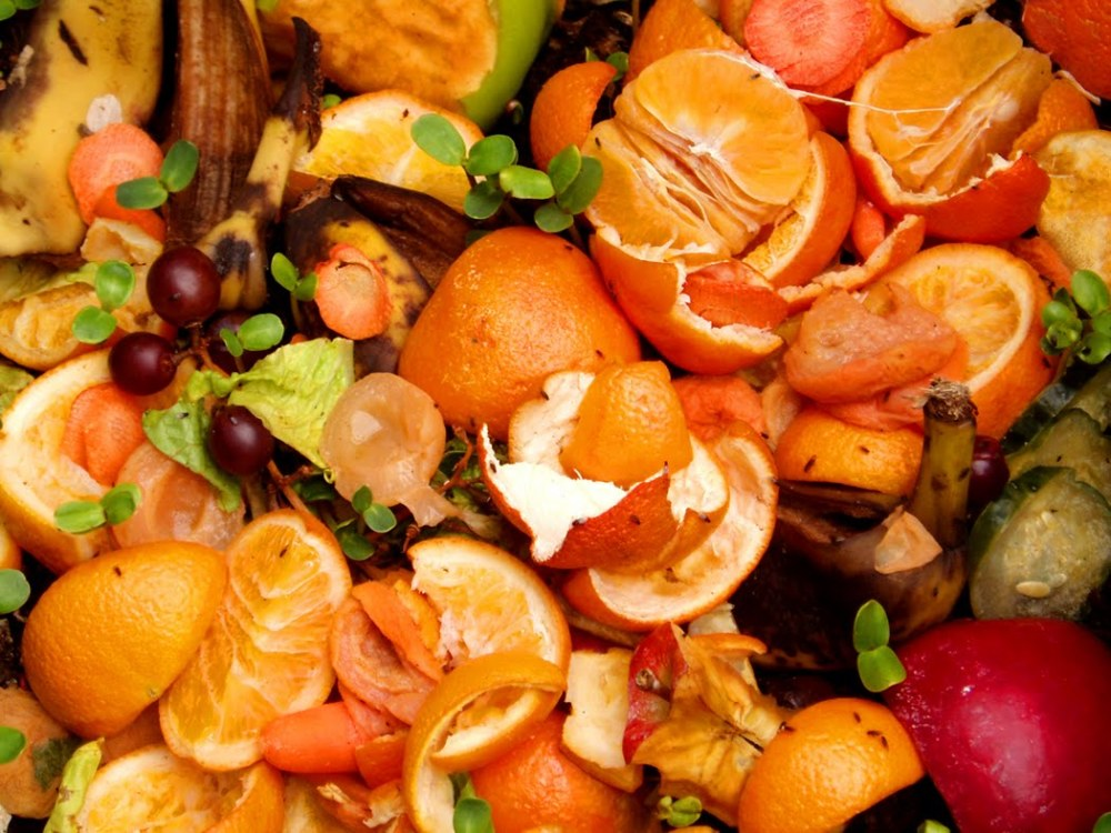 ¿Cuánto sabes sobre desperdicios de alimentos?