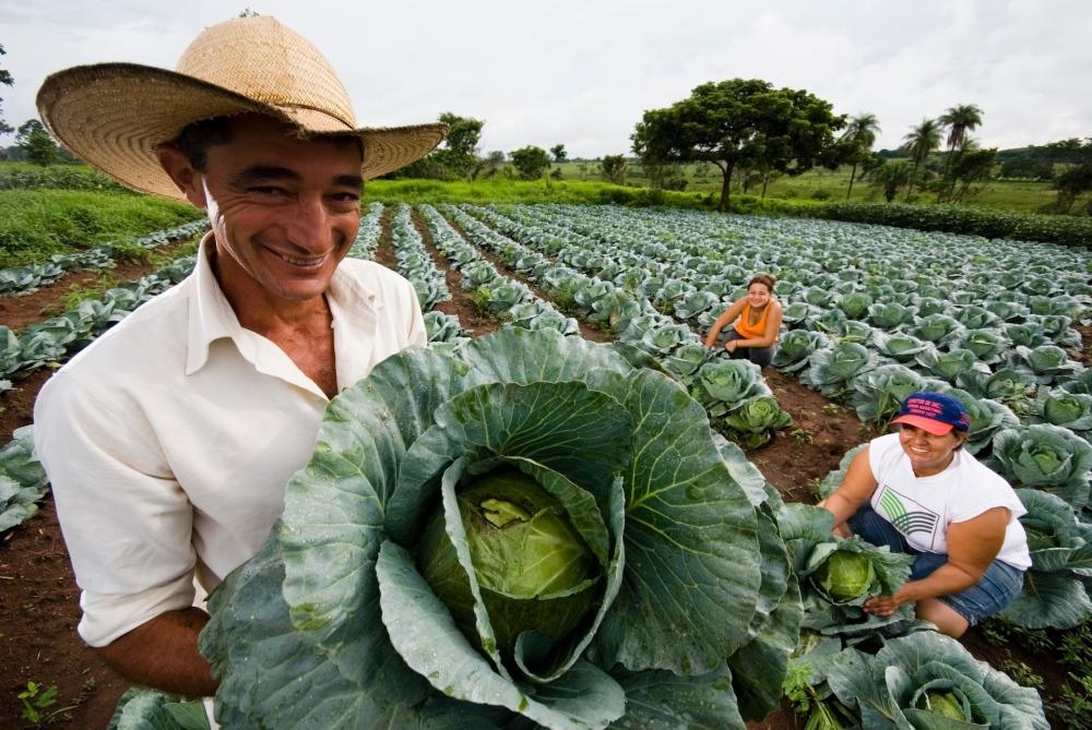 Los retos para garantizar la soberanía alimentaria en Ecuador