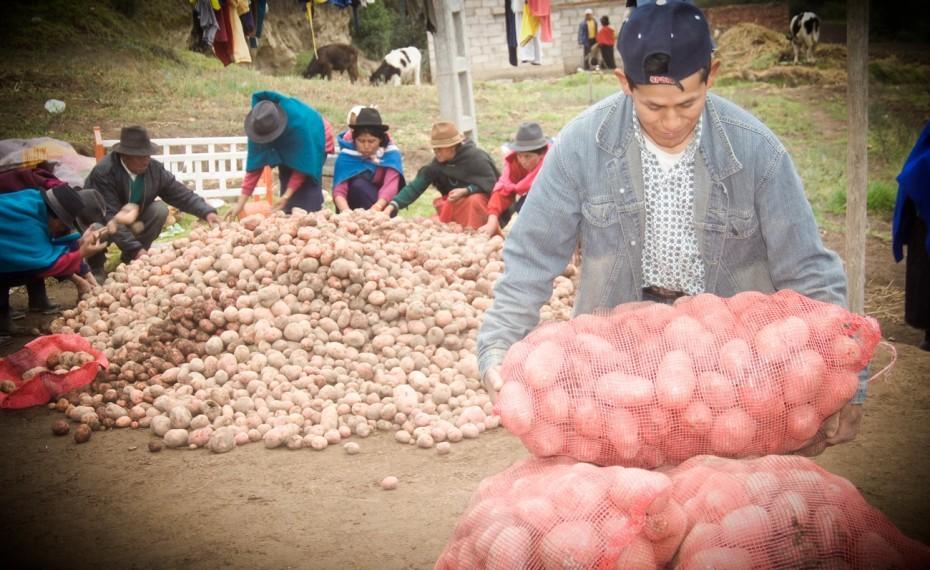 El Comercio Justo y su impacto en los más vulnerables