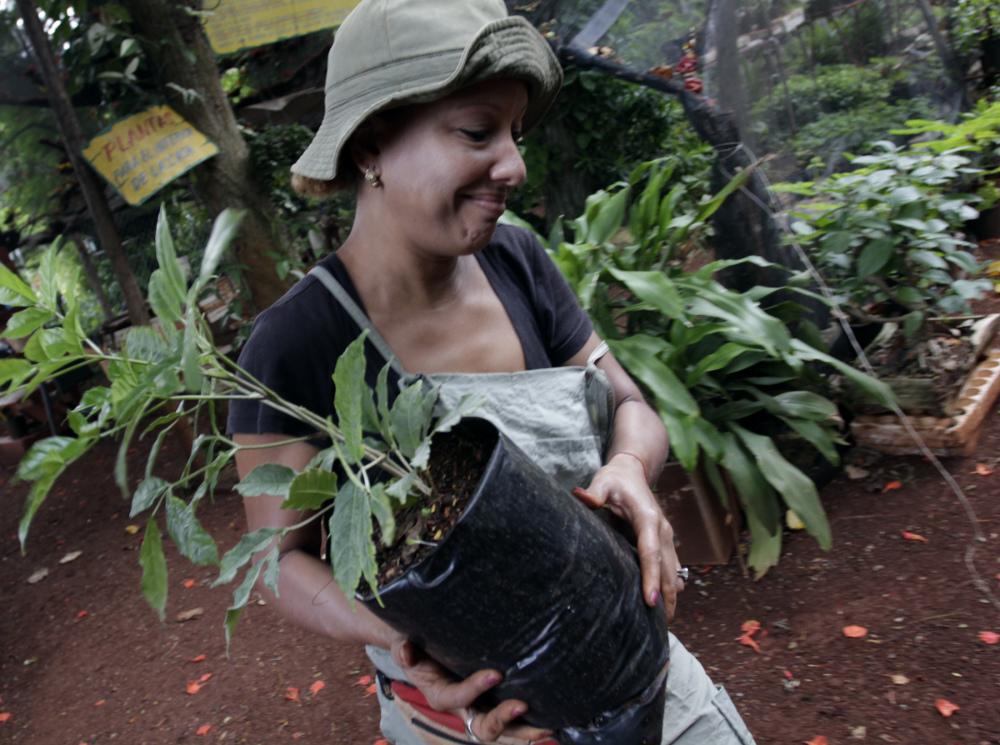 Cuba: garantías de provisión de alimentos desde una perspectiva de género