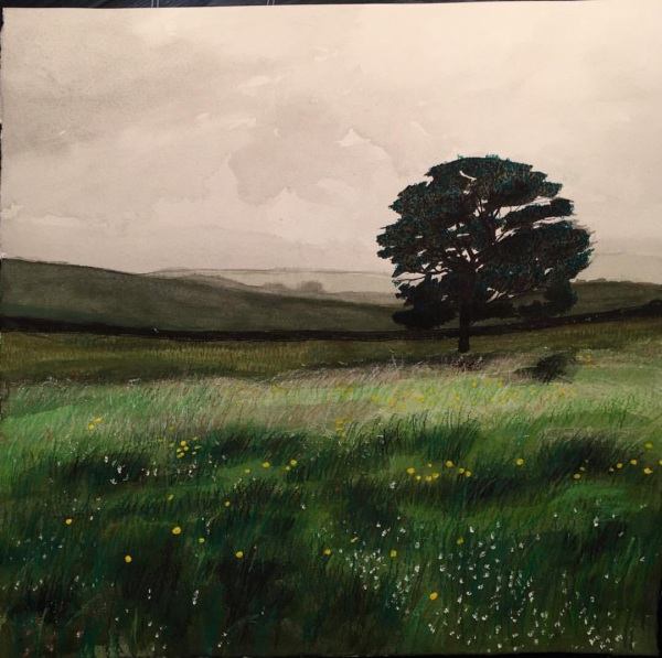LYME COUNTRY (SOLD)