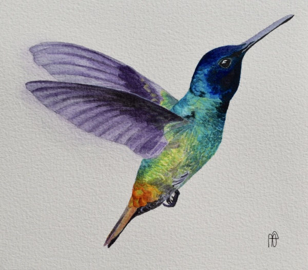 HUMMINGBIRD (SOLD)