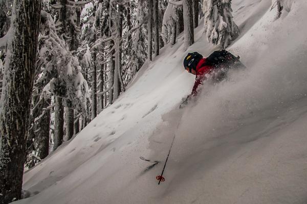 Tree skiing near Squamish