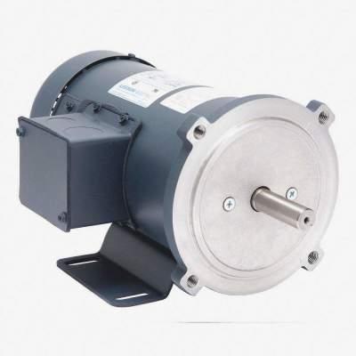 DC Permanent Magnet Motor
