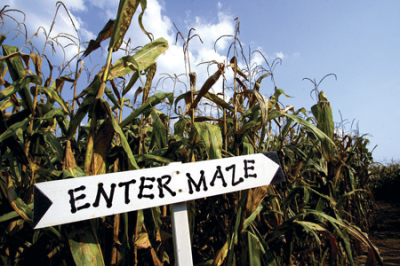 Youth Group - Corn Maze