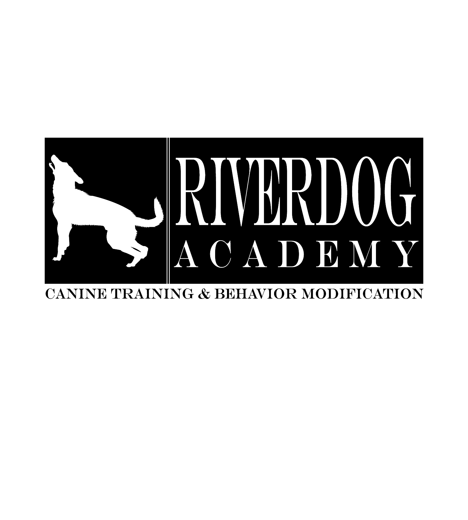 Riverdog Academy's Website Now Up and Running!
