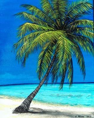 Palm Tree Beach  (available)