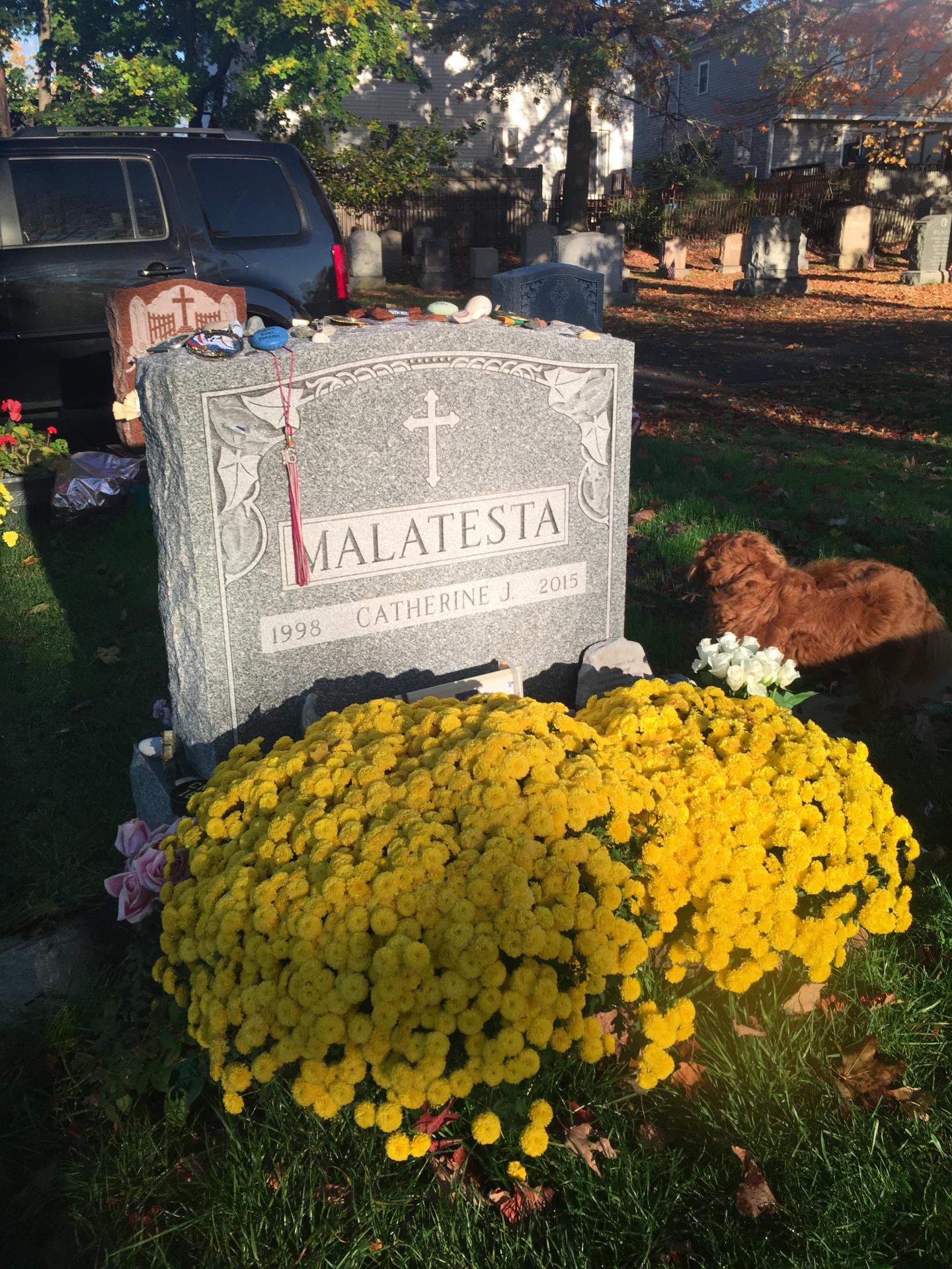 St. Paul Cemetery, Arlington