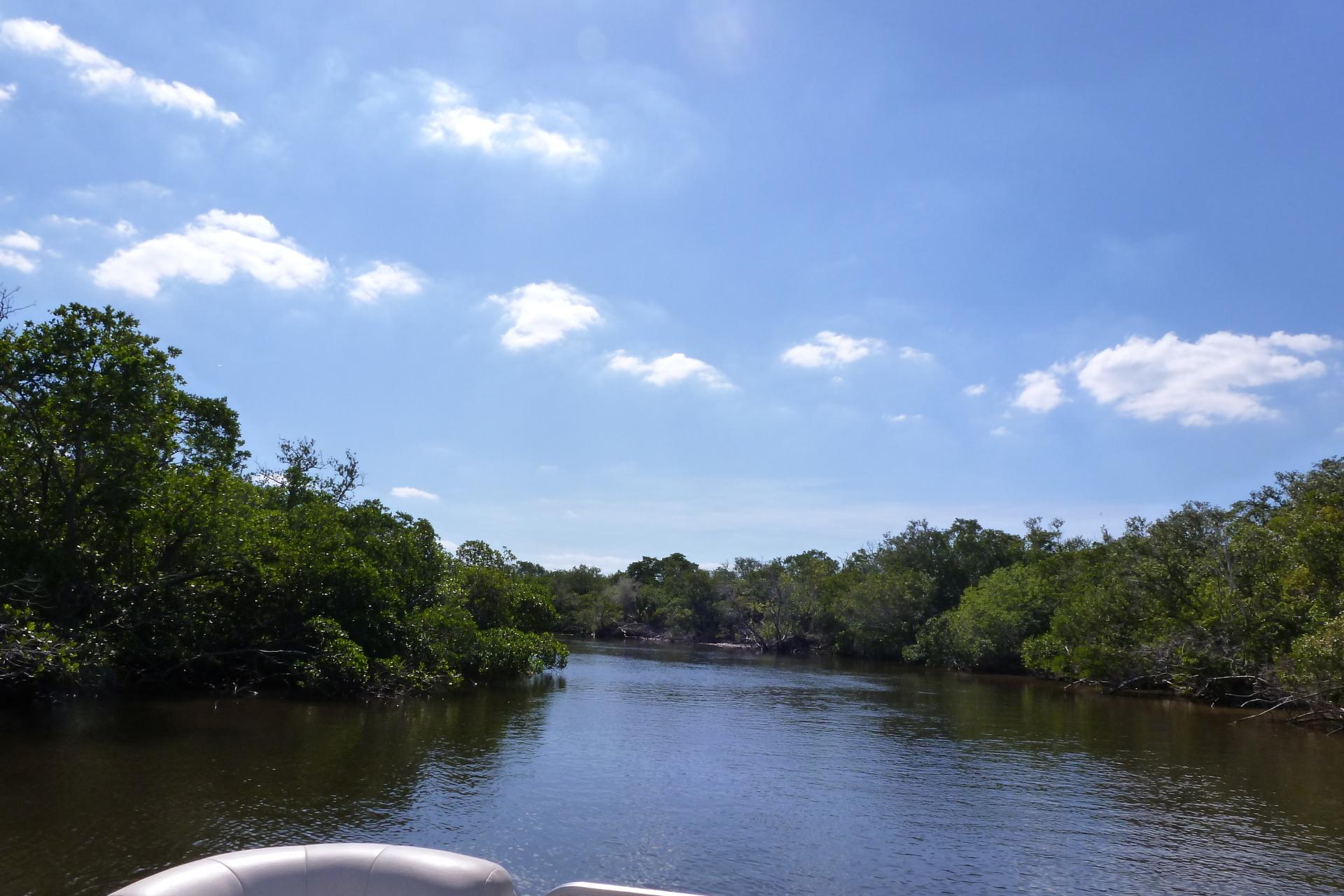 Mullock Creek