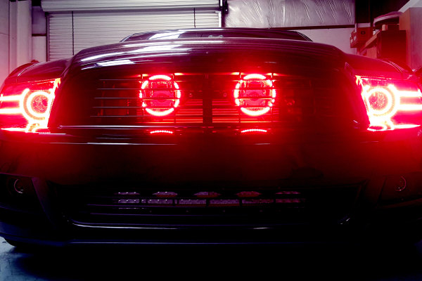 Mustang with red halos