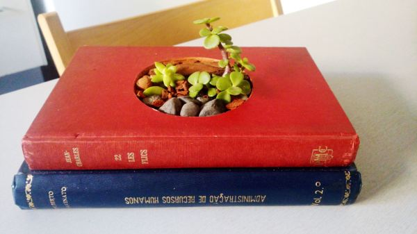 Livro Vaso