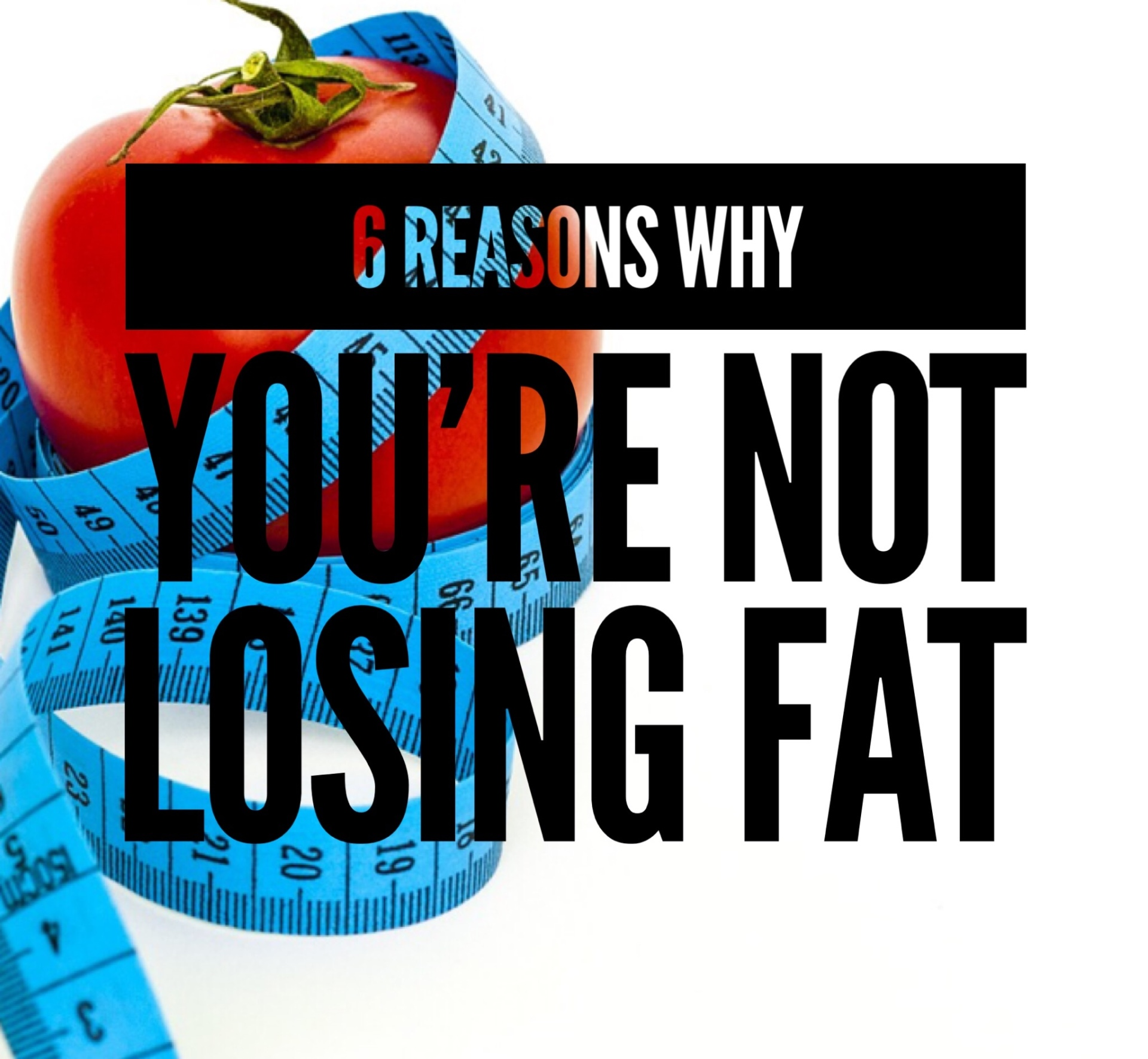 why you're not losing fat