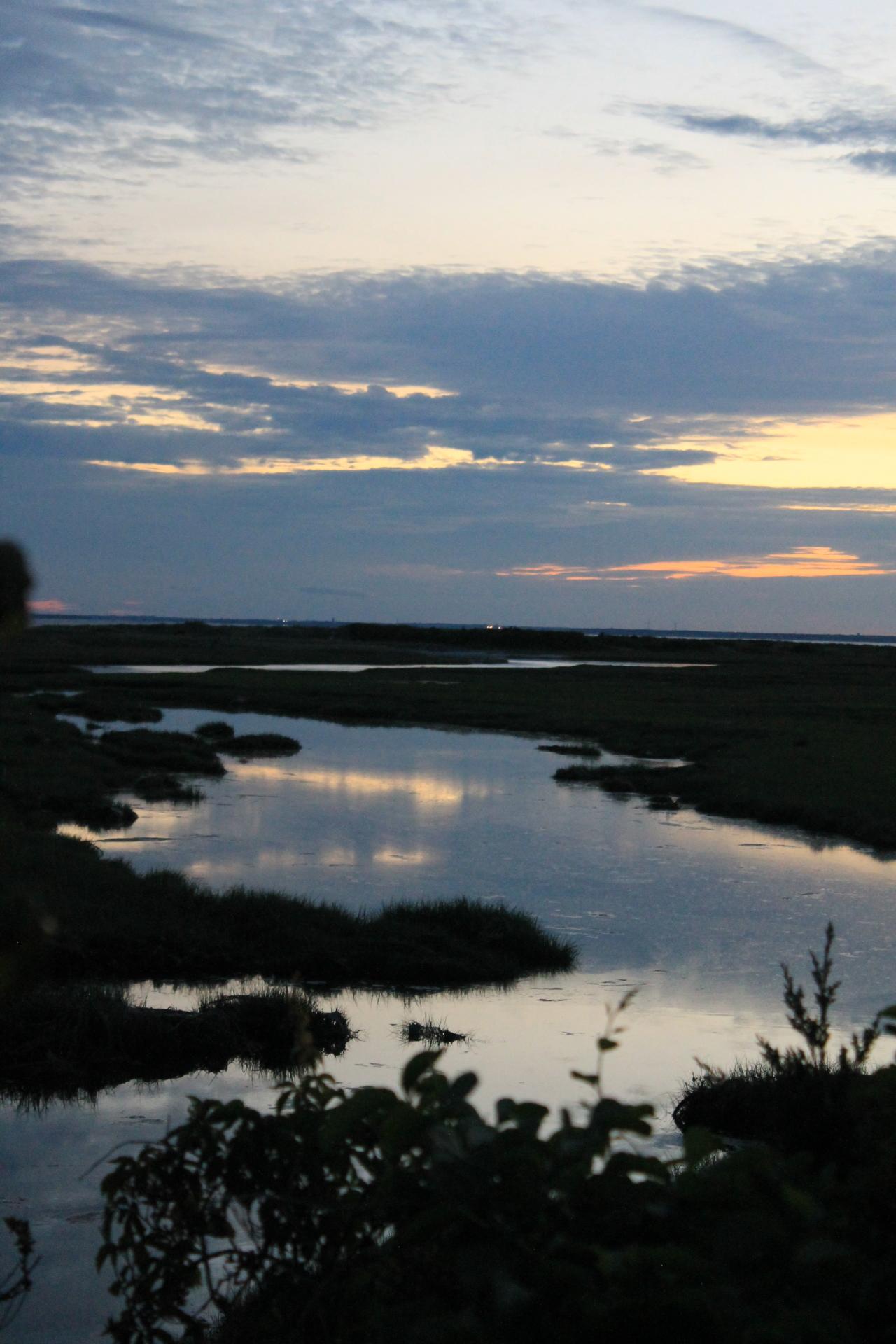 June Sunset, Sippewissett