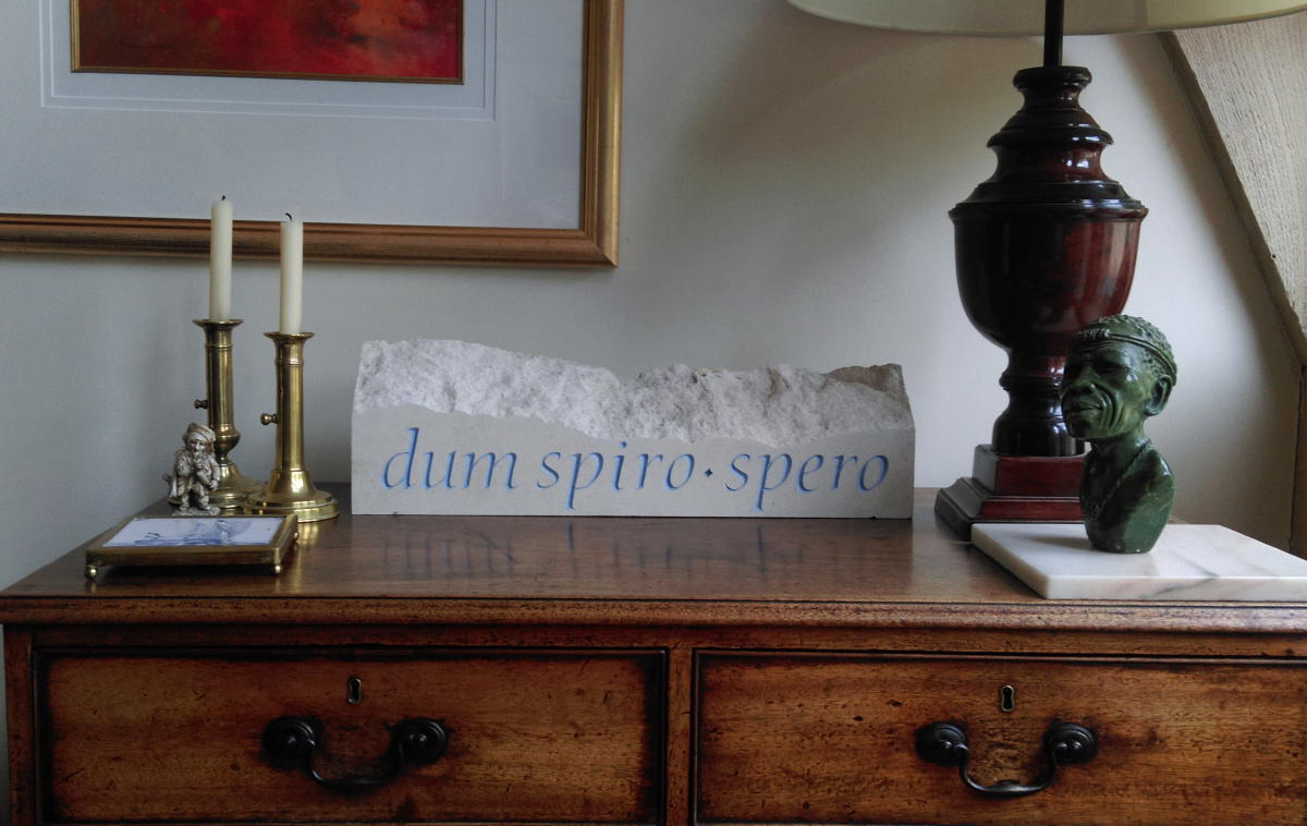 Dum Spiro Spero                           by Lisi Ashbridge