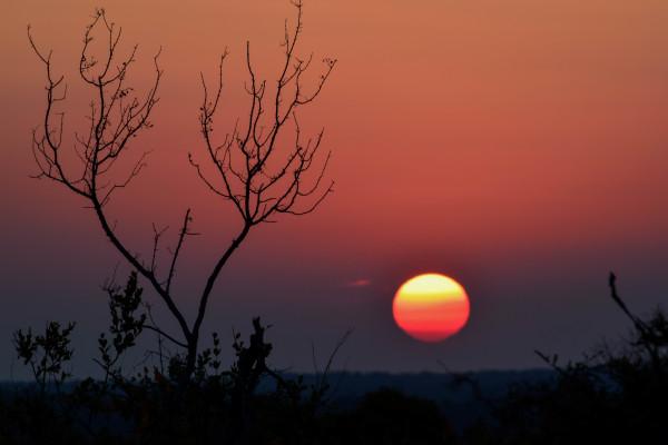 Sunset over Kruger National Park, South Africa
