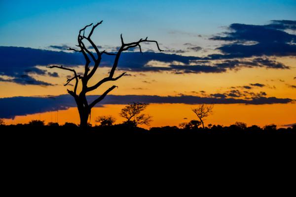 African Sunset over Kruger