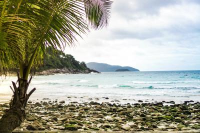 Phuket Summer Event
