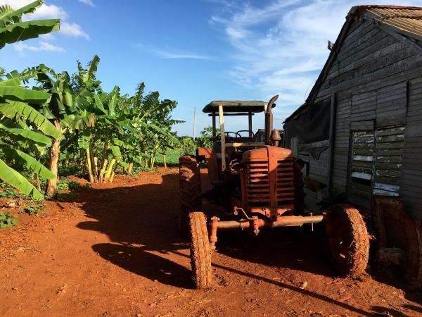 Cuba & sustainability