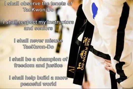 taekwondo tkd student oath