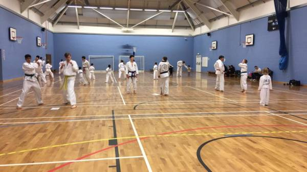Students in training hall practicing in tkd on 19-03-2017