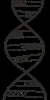 Thomas Greve, Professional Genealogist logo