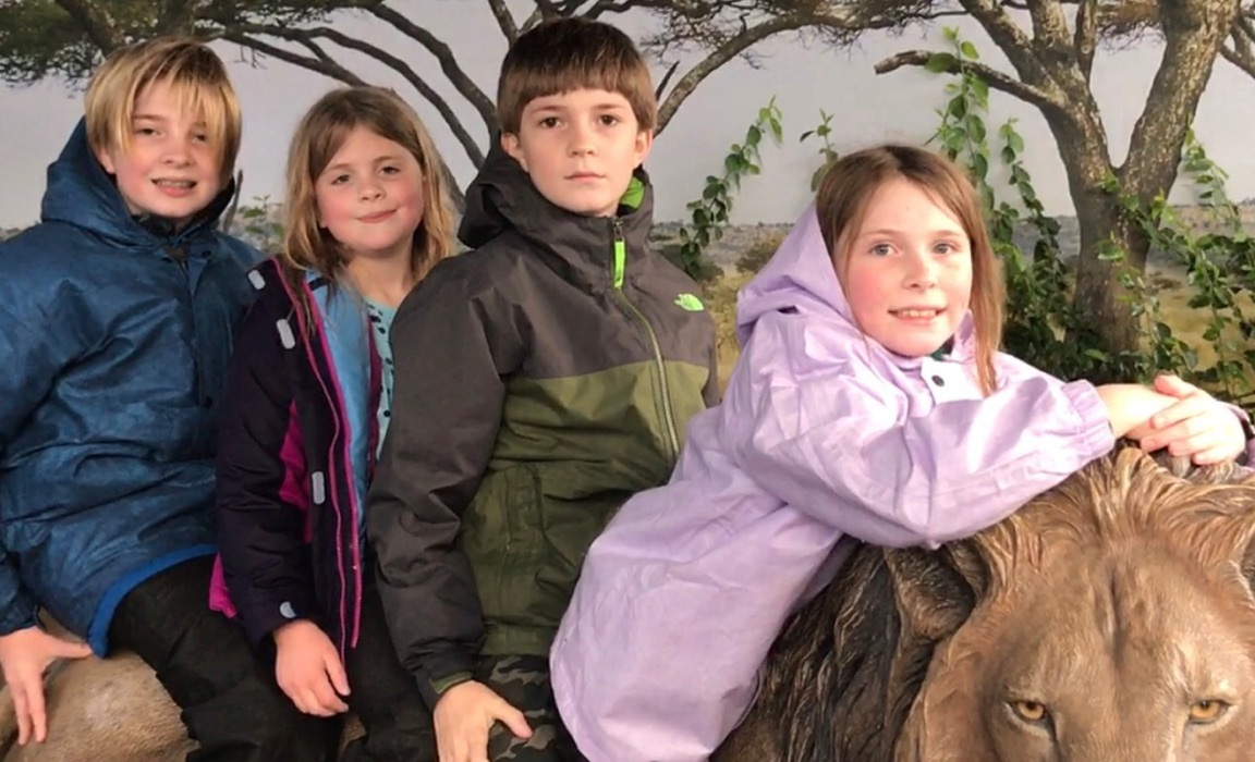 Through Marlie's Eyes