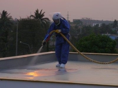 Roof Cleaning Port Elizabeth