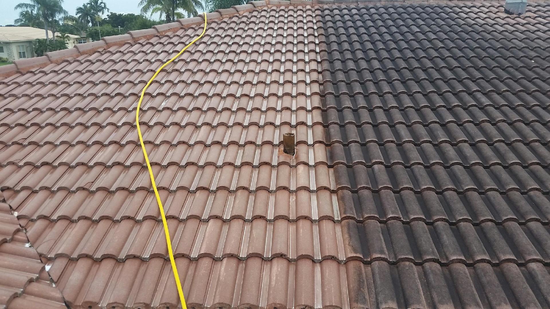 Soft Wash Roof Clean Port elizabeth