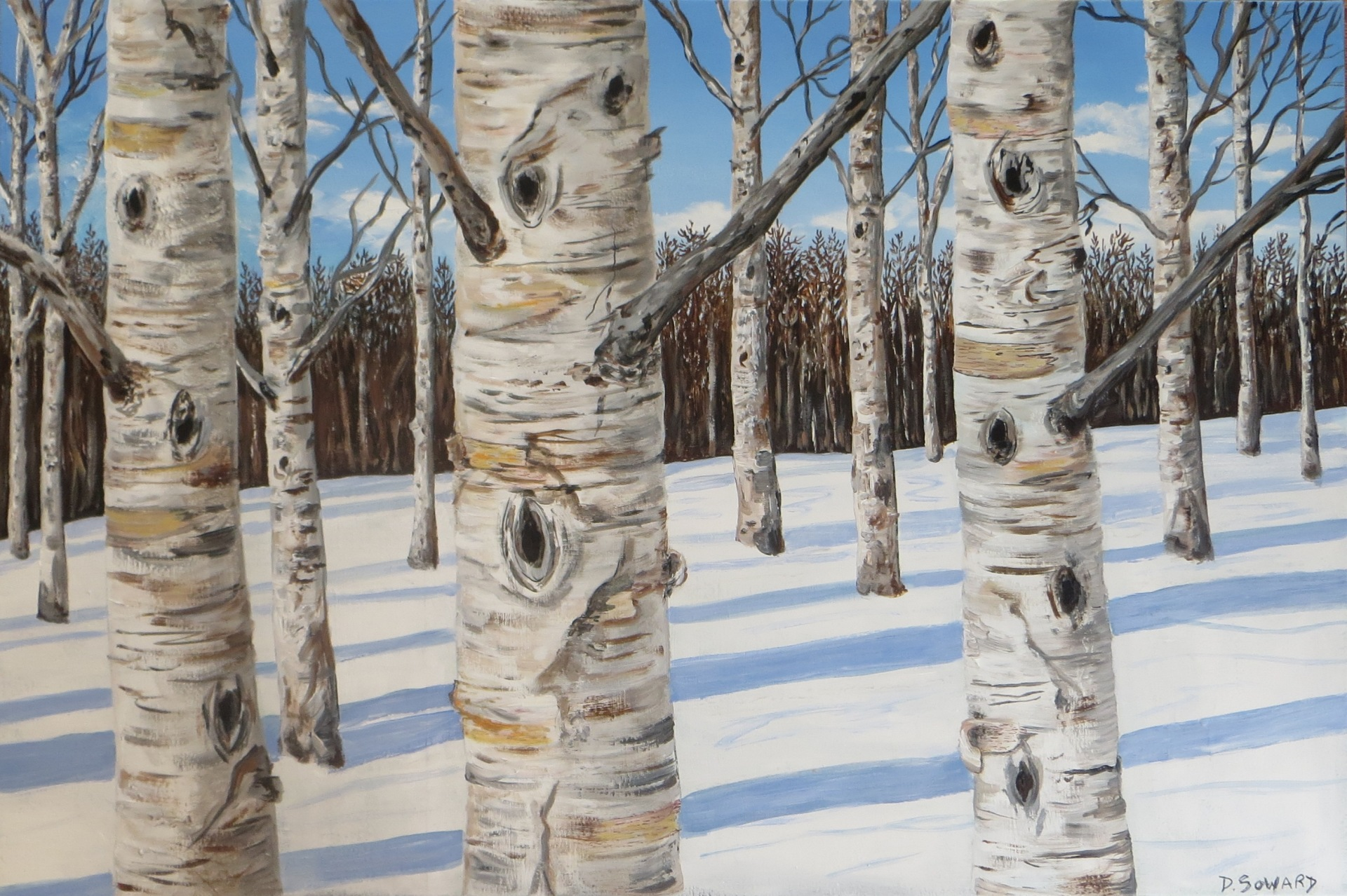 Winter Birch (24 x 36)