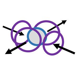 Atomic Nuclei