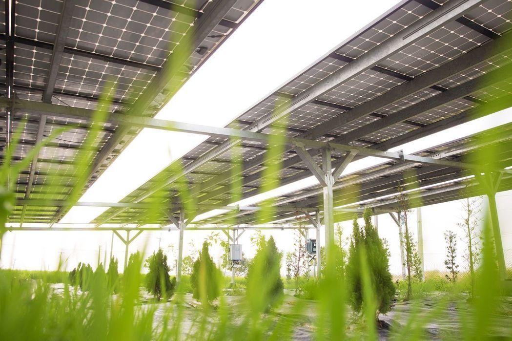 博立光電 9月提前發表全新綠能設備