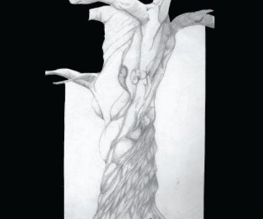 In 1997, at F.I.T. there was no longer a demand for me to study figure drawing, I still drew. With out direction I used anything that I could as a muse. This drawing is of a tree I passed everyday in the Bronx walking to the train to go to class,