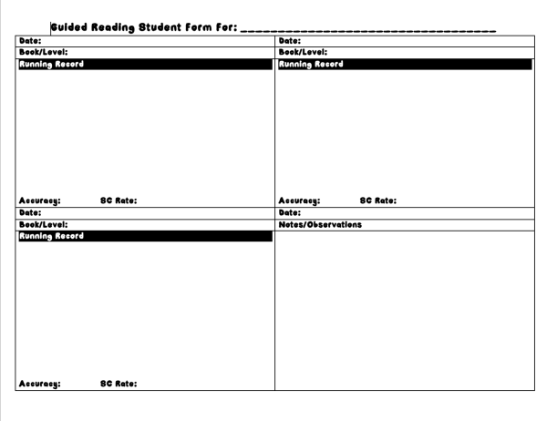 Individual Guided Reading Notes Option 2