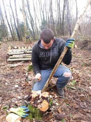 Making stakes with billhook