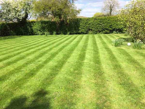 Blooms Gardening - Lawn Mowing Wadhurst
