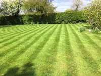 Blooms Gardening - Ticehurst Lawn Mowing