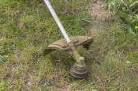 Blooms Gardening - Gardening Maintenance Strimming