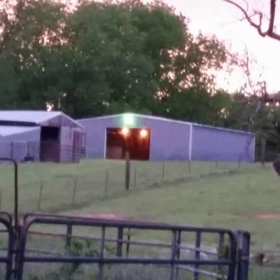 Show Barn