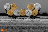 Composition of a hay wagon, loaded with bales of hay in Aquileia, Italy