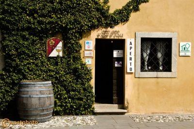 Clauiano, Friuli-Venezia-Giulia, Bella-Addormentata, Marco-Bellocchio, film, location, Italy, winemaker, foffani, wostphoto, wolfgang-stocker