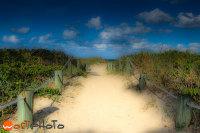 Sandy beach walkway to the ocean in Vero Beach, Florida, USA.