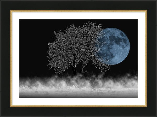 Composite of a full moon behind a tree in the night framed with mat